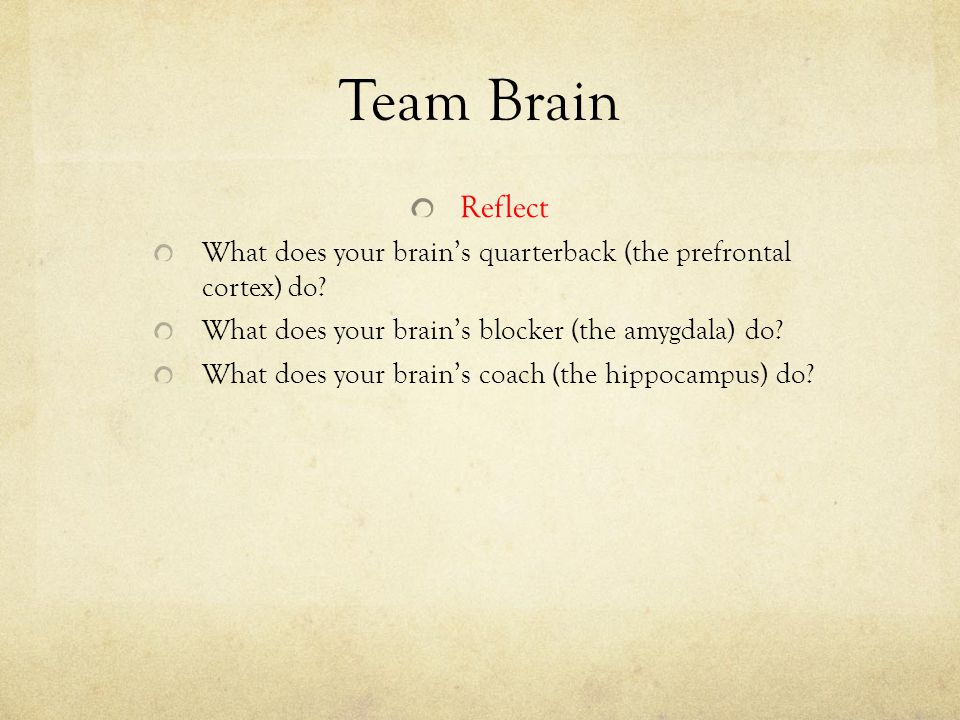 Team Brain Reflect. What does your brain's quarterback (the prefrontal cortex) do What does your brain's blocker (the amygdala) do