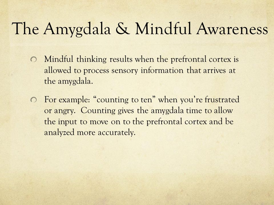 The Amygdala & Mindful Awareness