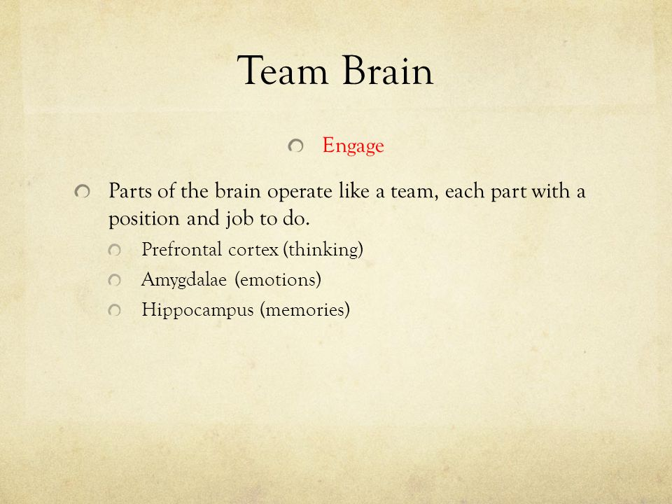 Team Brain Engage. Parts of the brain operate like a team, each part with a position and job to do.