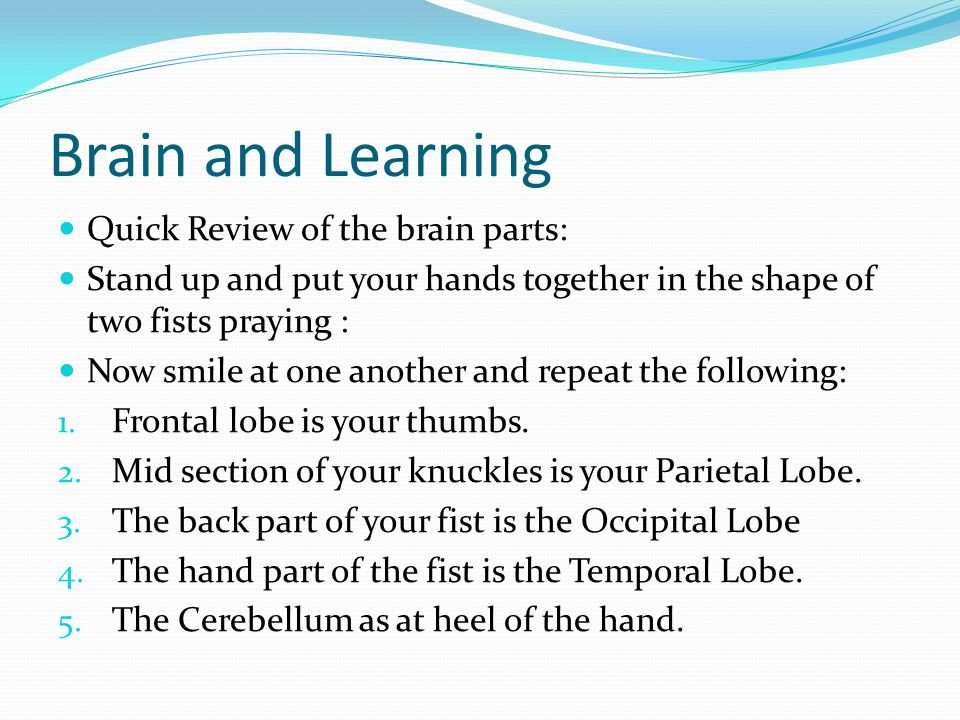 Brain and Learning Quick Review of the brain parts: