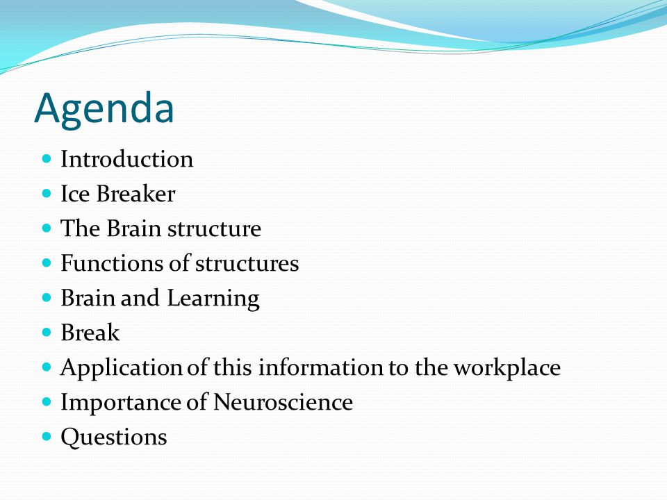 Agenda Introduction Ice Breaker The Brain structure