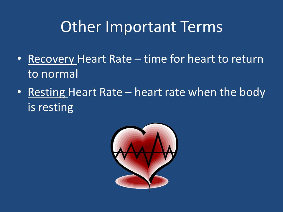 Other Important Terms Recovery Heart Rate – time for heart to return to normal.