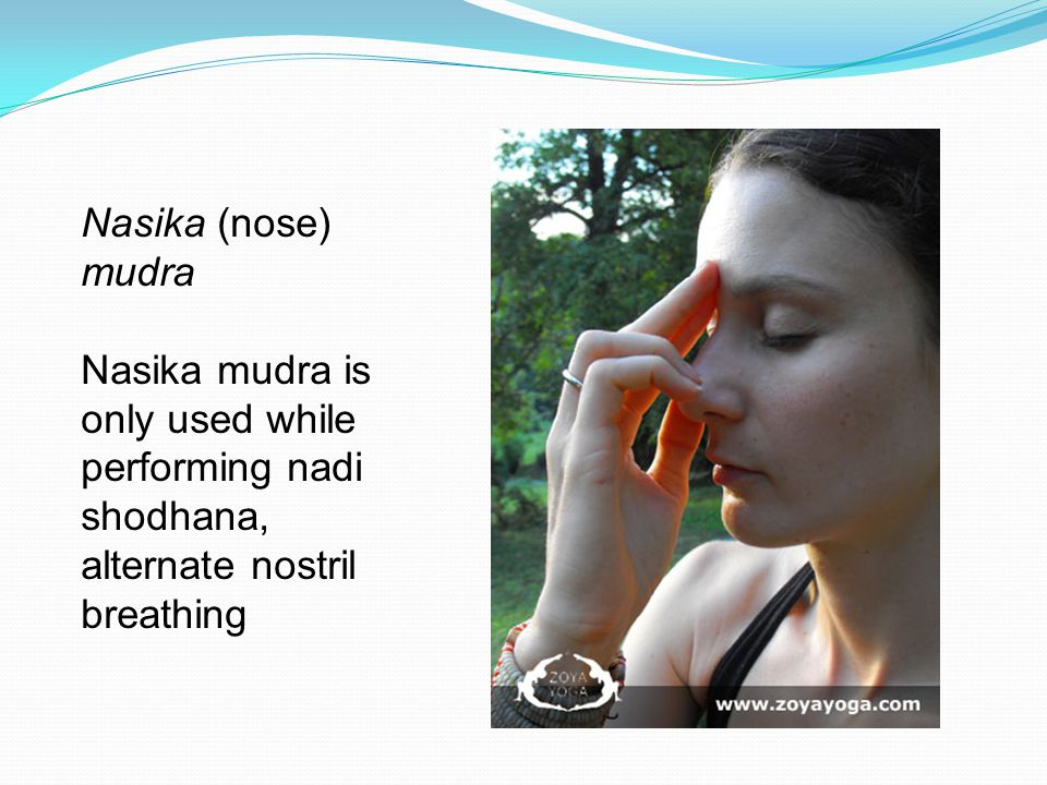 Nasika (nose) mudra Nasika mudra is only used while performing nadi shodhana, alternate nostril breathing