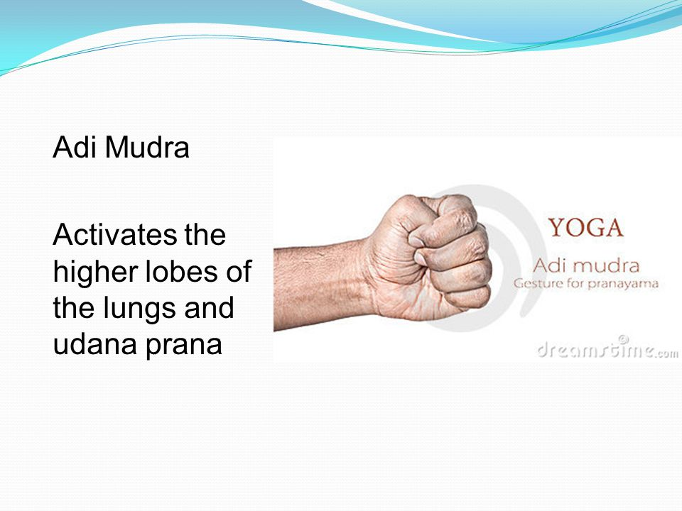 Adi Mudra Activates the higher lobes of the lungs and udana prana
