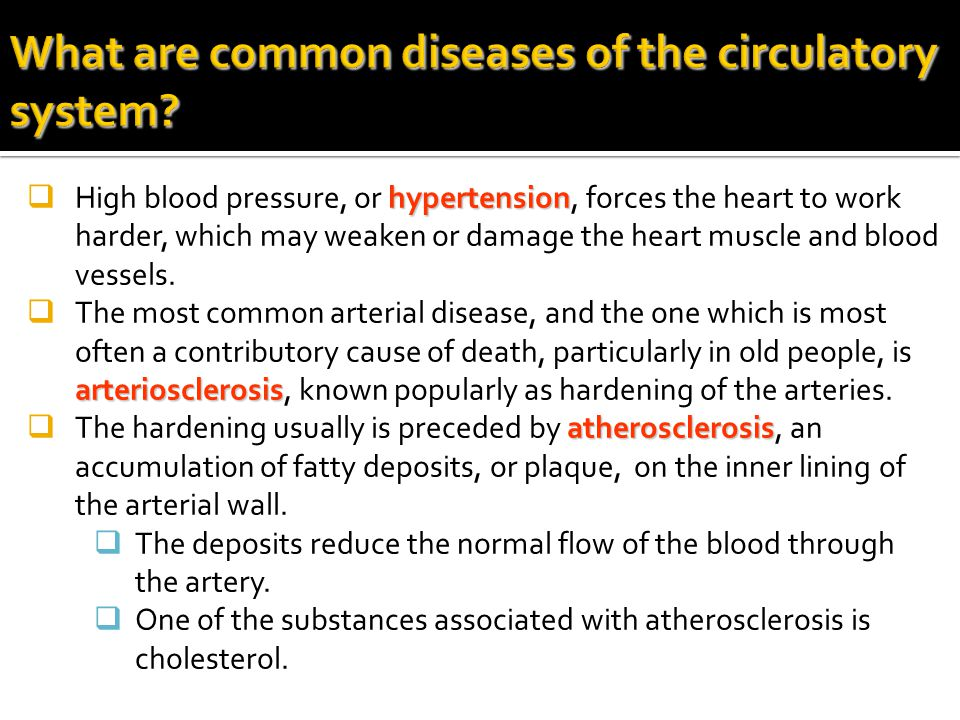 What are common diseases of the circulatory system