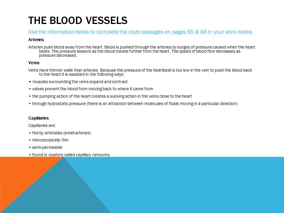 The blood vessels Use the information below to complete the cloze passages on pages 65 & 66 in your work books.