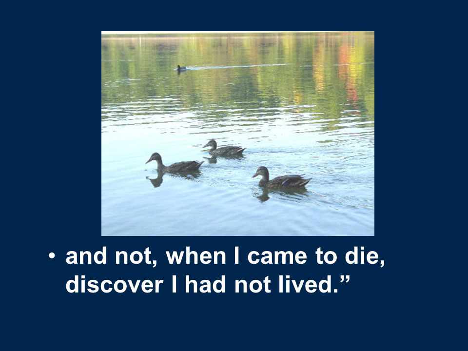 and not, when I came to die, discover I had not lived.