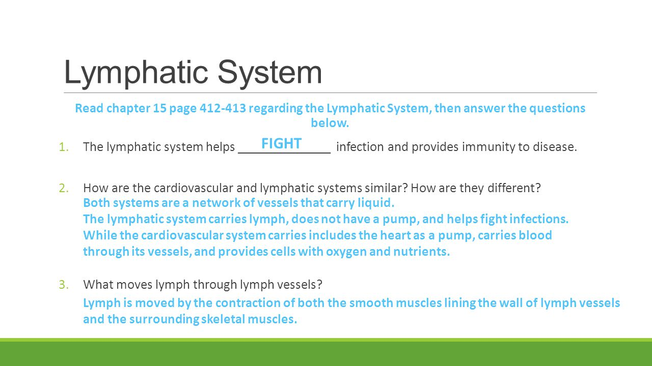 Lymphatic System FIGHT