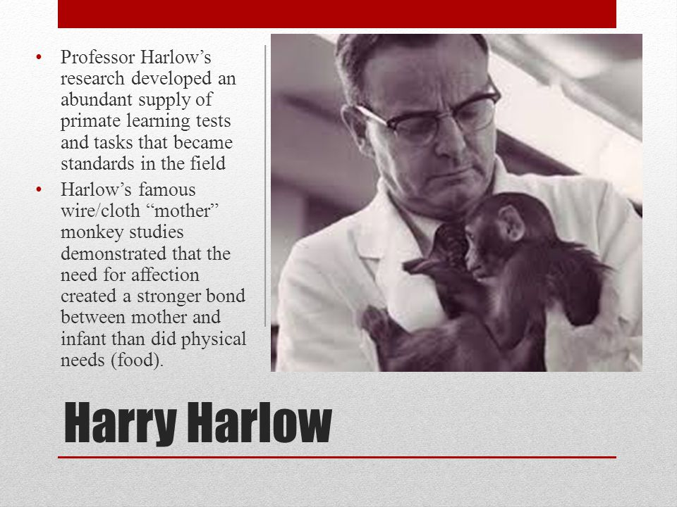 Professor Harlow's research developed an abundant supply of primate learning tests and tasks that became standards in the field