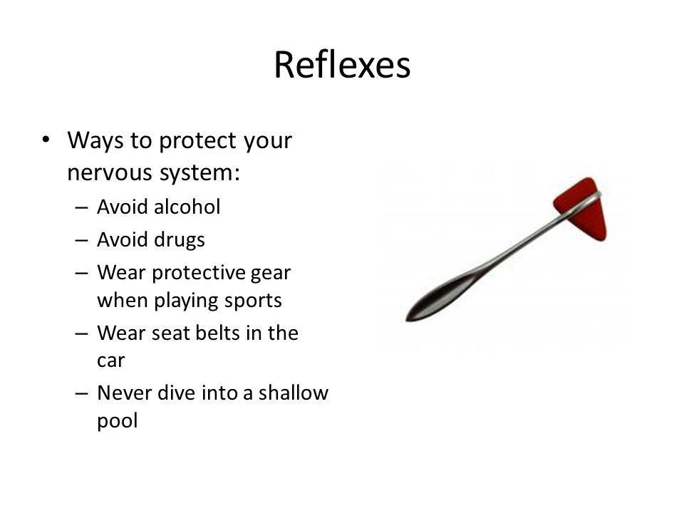 Reflexes Ways to protect your nervous system: Avoid alcohol
