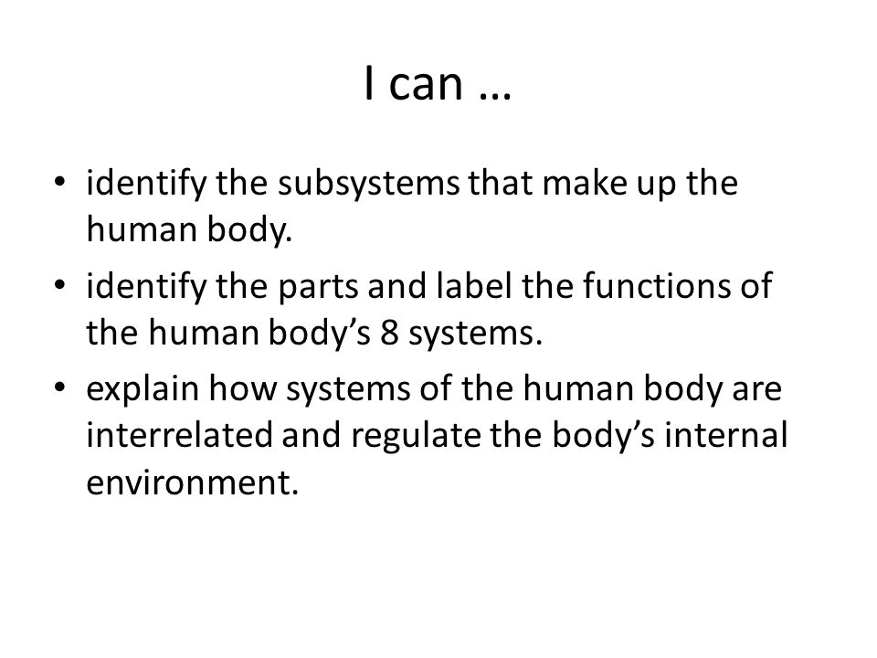 I can … identify the subsystems that make up the human body.