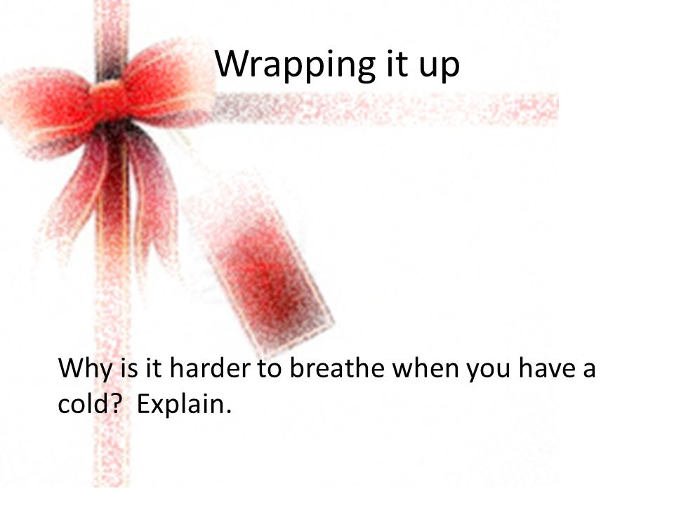 Wrapping it up Why is it harder to breathe when you have a cold Explain.
