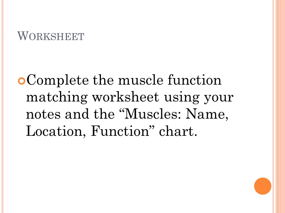 Worksheet Complete the muscle function matching worksheet using your notes and the Muscles: Name, Location, Function chart.