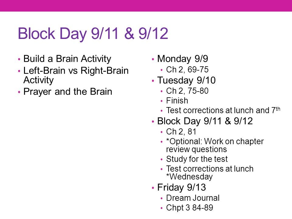 Block Day 9/11 & 9/12 Build a Brain Activity