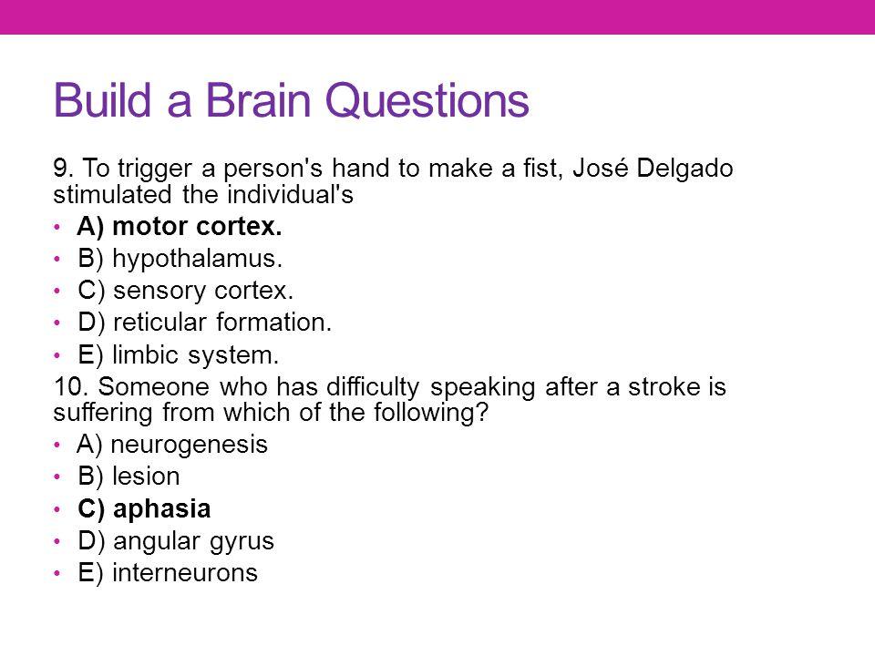 Build a Brain Questions
