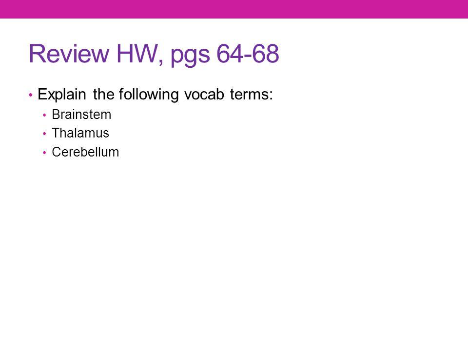Review HW, pgs 64-68 Explain the following vocab terms: Brainstem