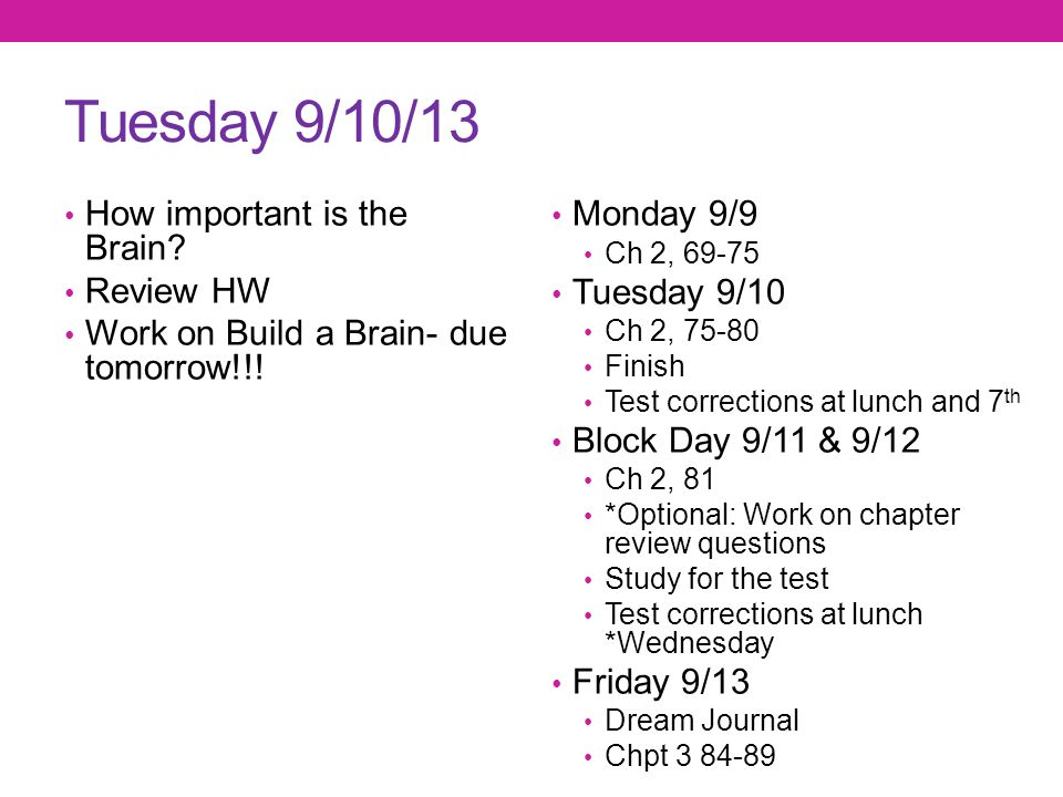 Tuesday 9/10/13 How important is the Brain Review HW