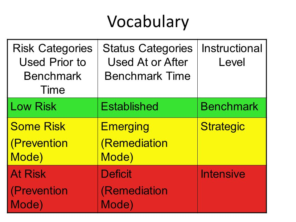 Vocabulary Risk Categories Used Prior to Benchmark Time
