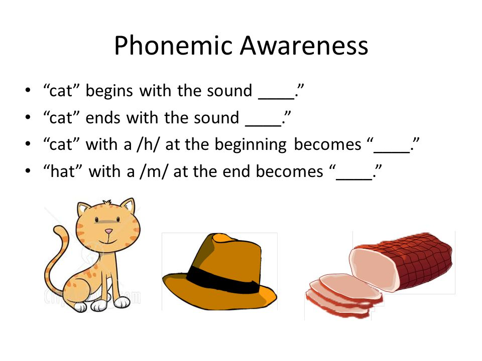 Phonemic Awareness cat begins with the sound ____.