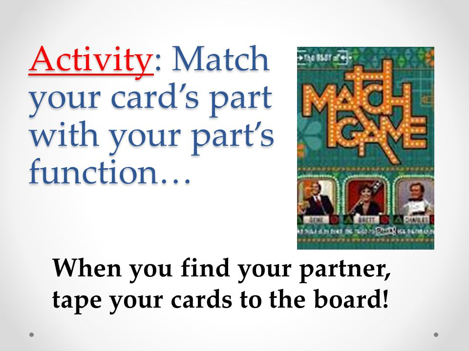 Activity: Match your card's part with your part's function…