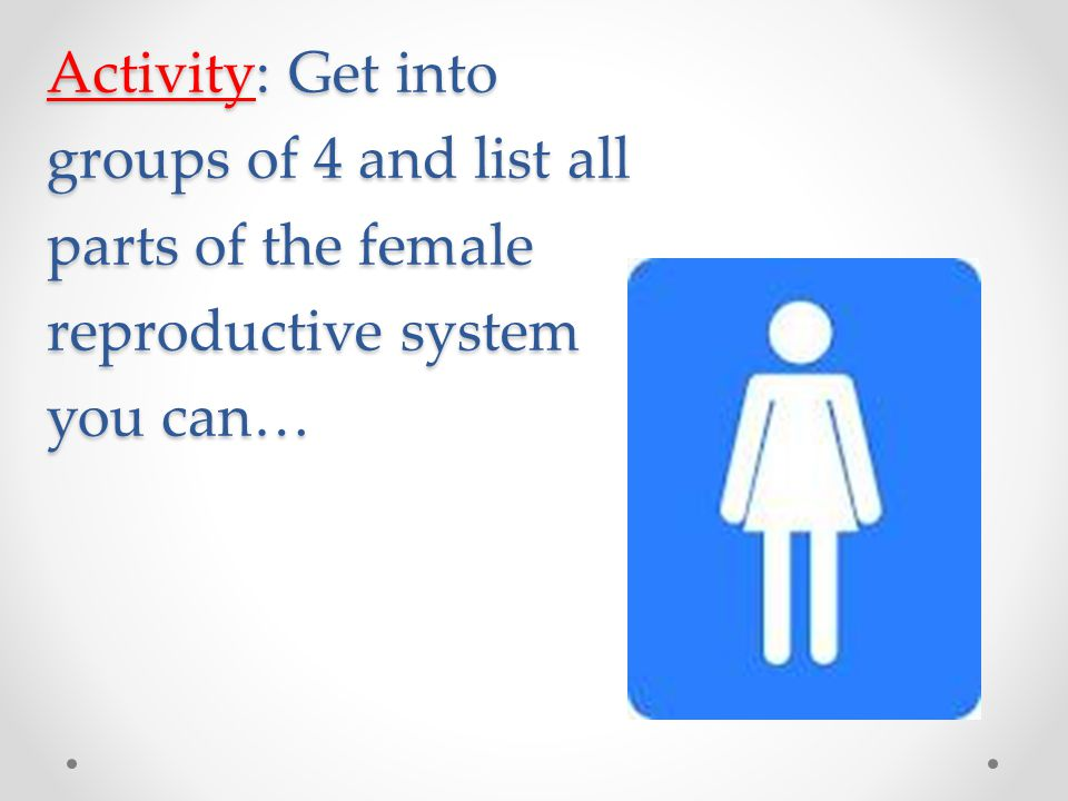 Activity: Get into groups of 4 and list all parts of the female reproductive system you can…