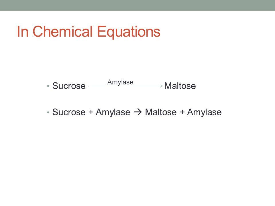 In Chemical Equations Sucrose Maltose