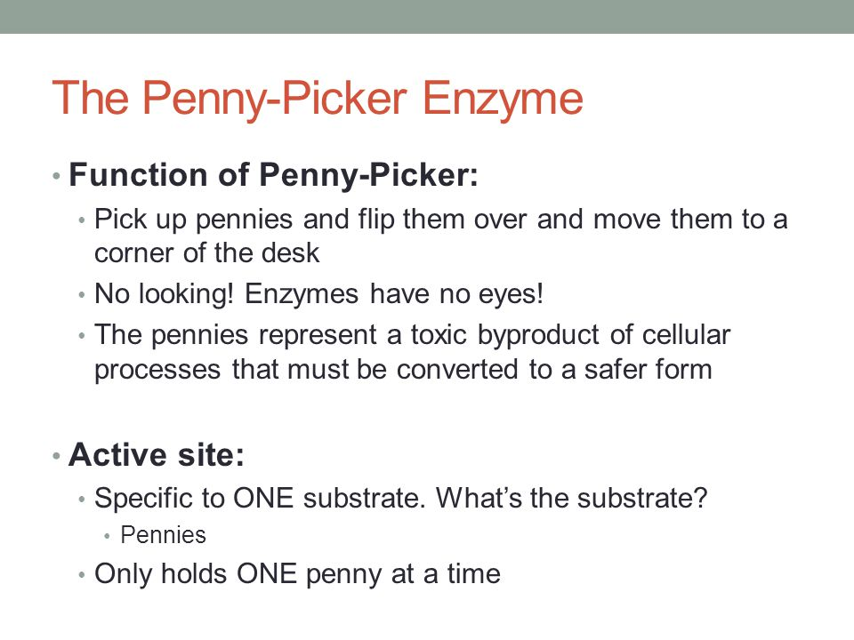The Penny-Picker Enzyme