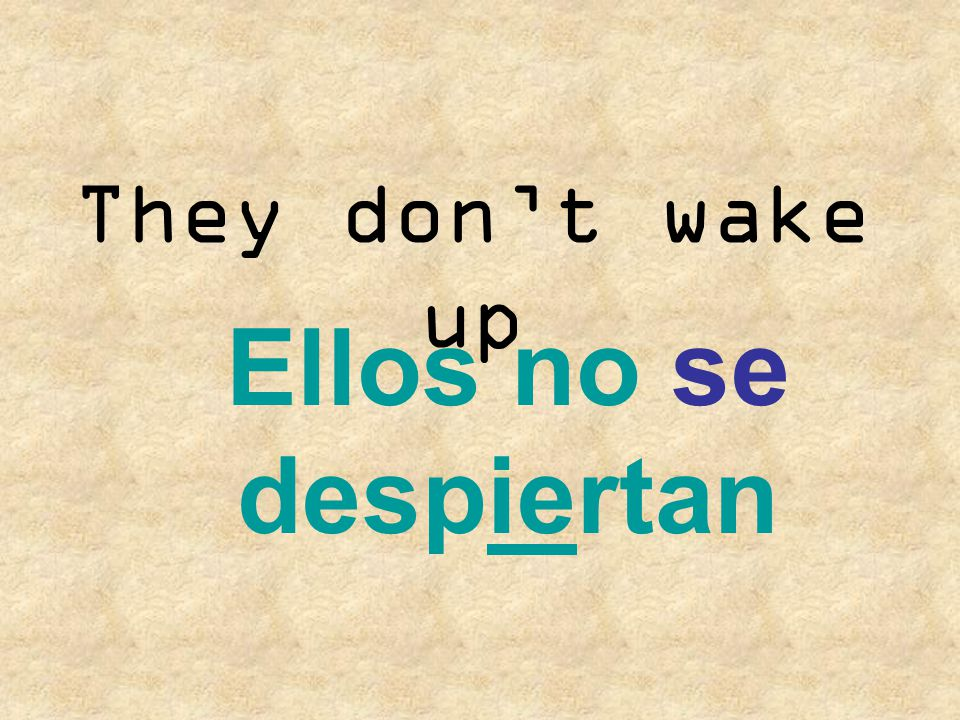 They don't wake up Ellos no se despiertan