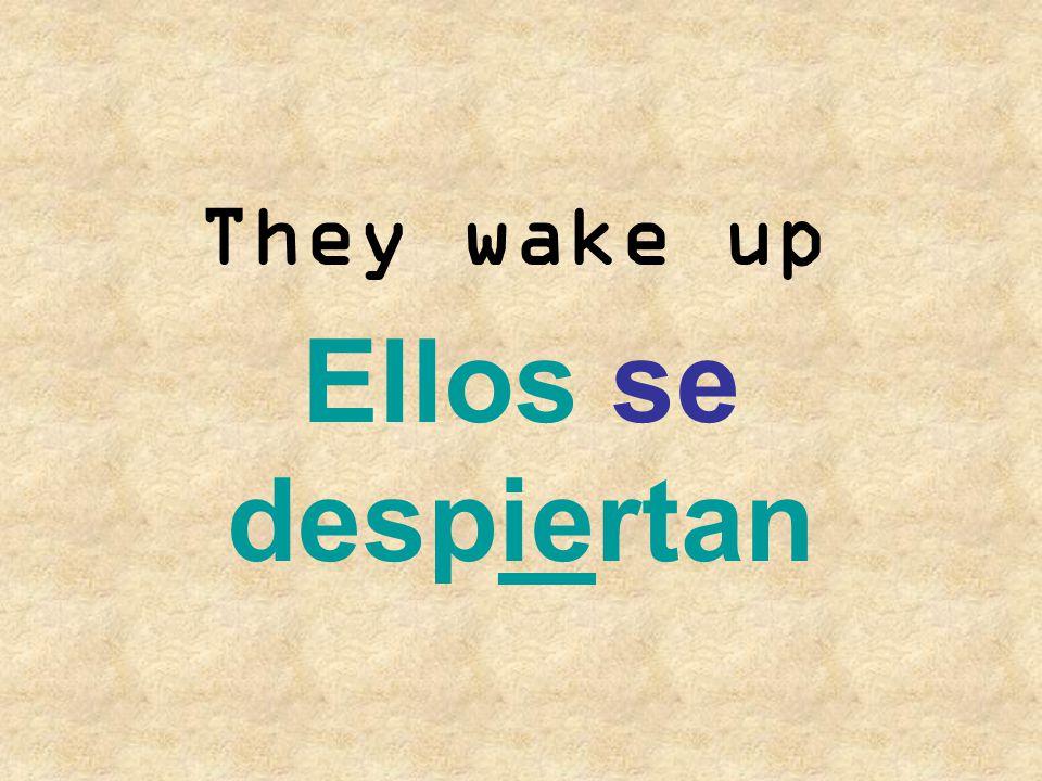 They wake up Ellos se despiertan