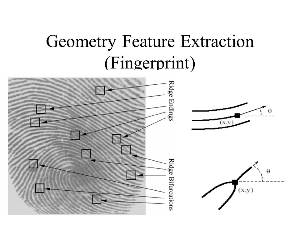 Geometry Feature Extraction (Fingerprint)