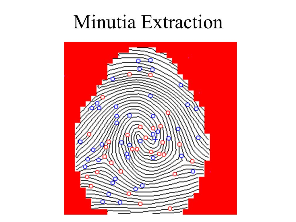 Minutia Extraction
