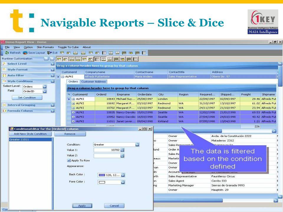 Navigable Reports – Slice & Dice