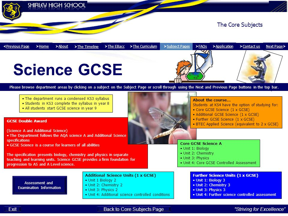 Science GCSE The Core Subjects Striving for Excellence Exit