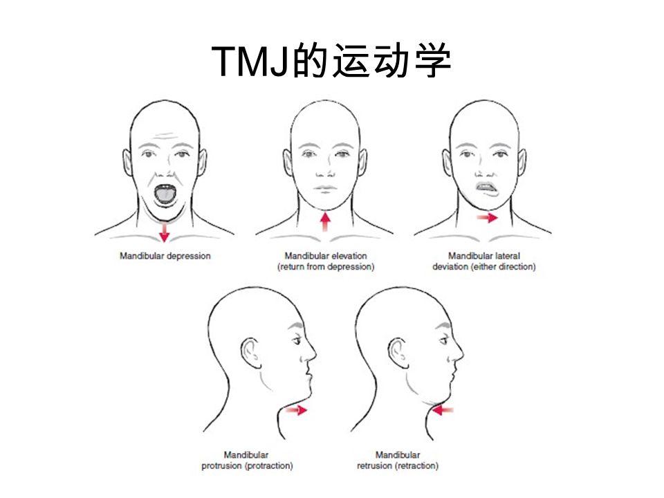 TMJ的运动学
