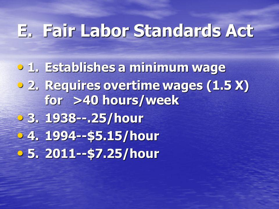 E. Fair Labor Standards Act