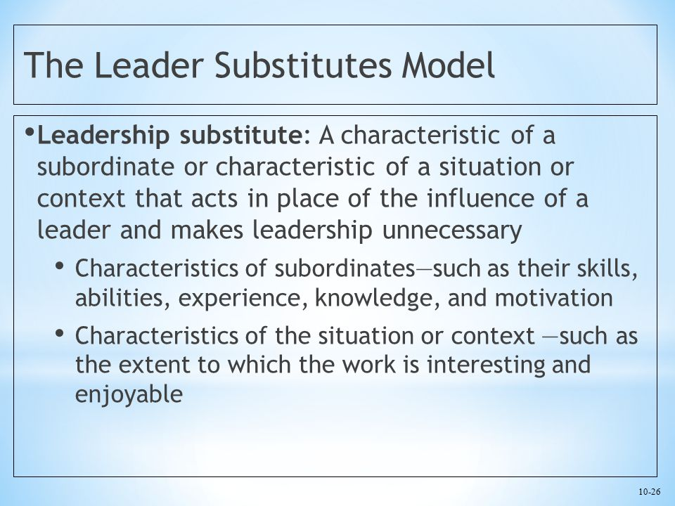 The Leader Substitutes Model