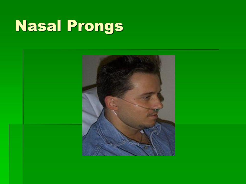 Nasal Prongs