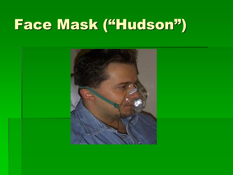 Face Mask ( Hudson )