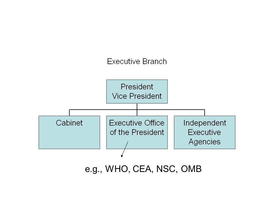 e.g., WHO, CEA, NSC, OMB
