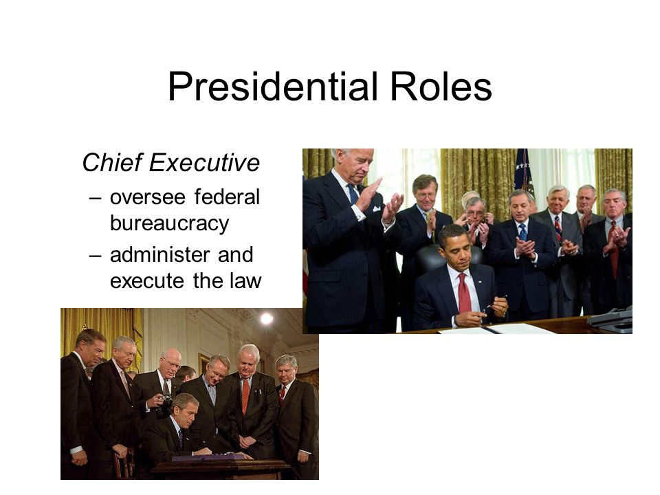 Presidential Roles Chief Executive oversee federal bureaucracy