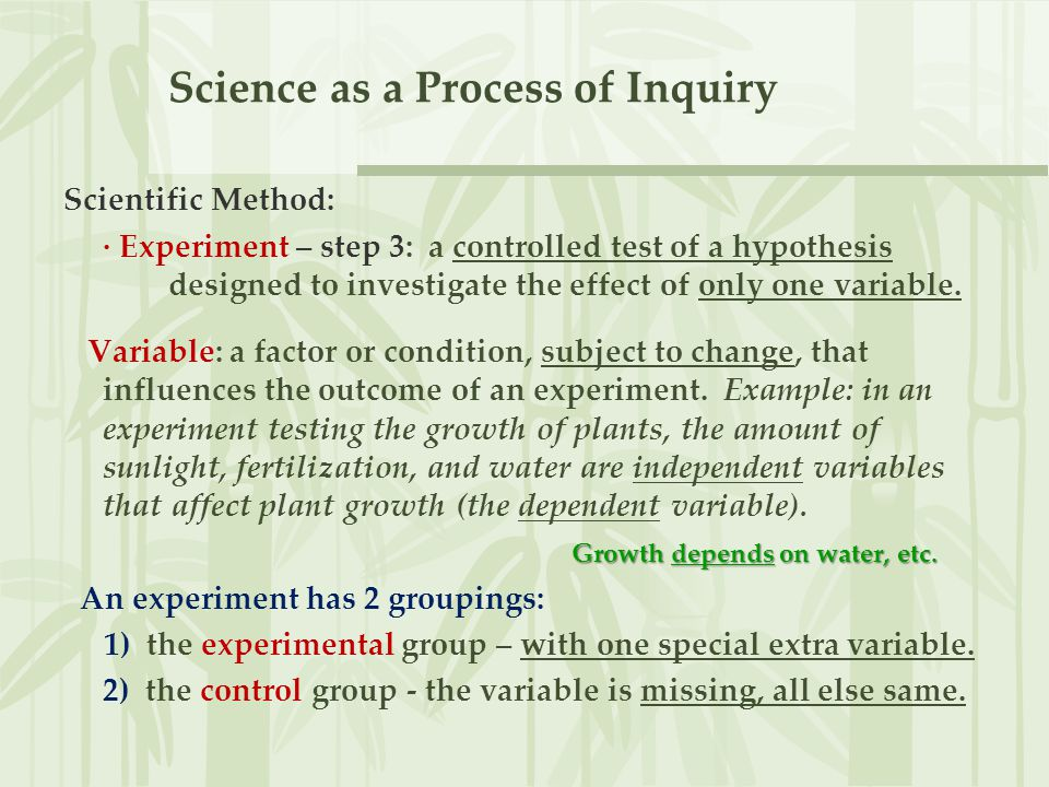 Science as a Process of Inquiry