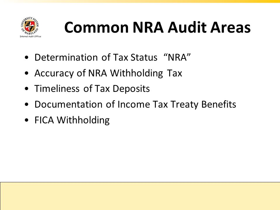 Common NRA Audit Areas Determination of Tax Status NRA