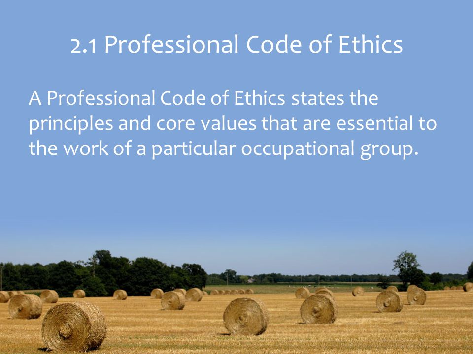 2.1 Professional Code of Ethics