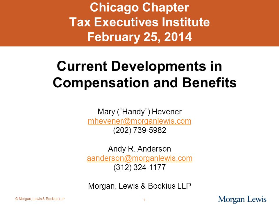 Chicago Chapter Tax Executives Institute February 25, 2014