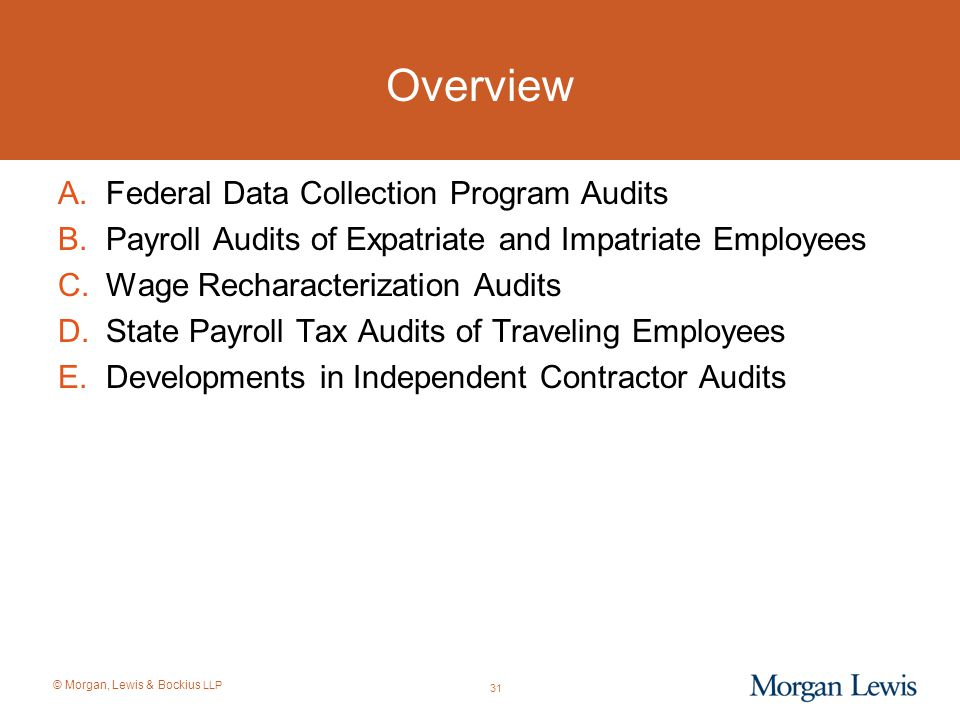 Overview Federal Data Collection Program Audits
