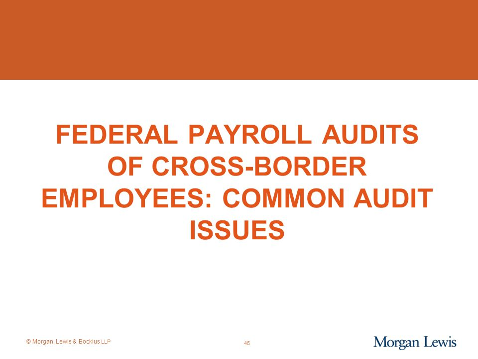 Federal Payroll Audits of Cross-Border EmployEES: COMMON AUDIT ISSUES