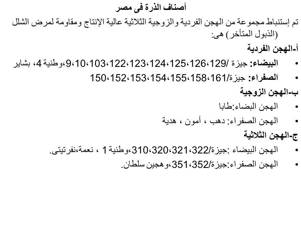 أصناف الذرة فى مصر تم إستنباط مجموعة من الهجن الفردية والزوجية الثلاثية عالية الإنتاج ومقاومة لمرض الشلل (الذبول المتأخر) هى: