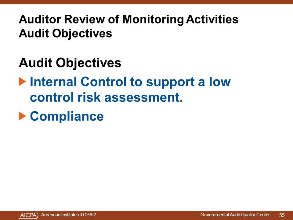 Auditor Review of Monitoring Activities Audit Objectives
