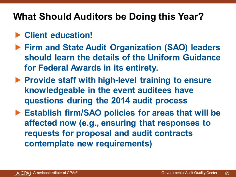 What Should Auditors be Doing this Year