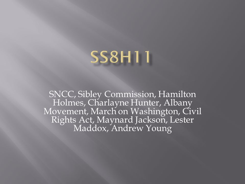 SS8H11
